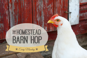Homestead-Barn-Hop-NEW