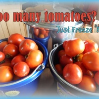 Too Many Tomatoes? Just Freeze 'em!