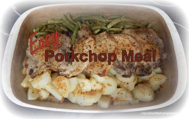 Easy Porkchop Meal