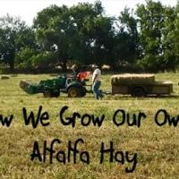 How We Grow Our Own Alfalfa Hay