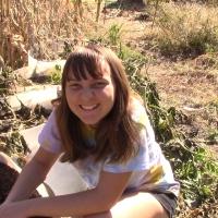 Container Gardening || We Grew Sweet Potatoes In Barrels || Harvest Reveal!