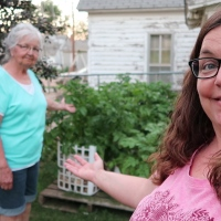 She Grows Potatoes in Feed Sacks, Buckets, Laundry Baskets & Anything That Will Hold Dirt!